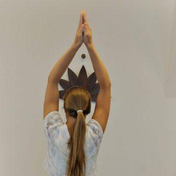 Asana Baum Hatha Yoga Amar Das